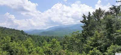 Gatlinburg Residential Lots & Land For Sale: Lots 40&45 Birdie Ln