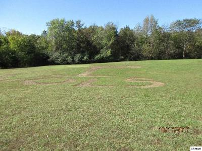 Sevierville Residential Lots & Land For Sale: Lot 2 Sterling Ct