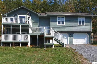 Sevierville Single Family Home For Sale: 1977 Little Cove Road
