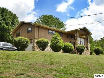 Kodak Single Family Home For Sale: 366 White Oak Circle