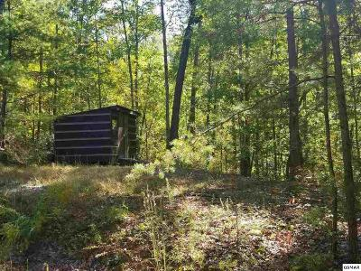 Sevierville Residential Lots & Land For Sale: 1824 Taylor Way