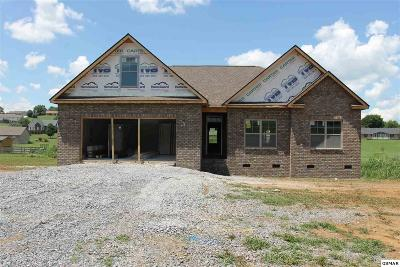 Sevierville Single Family Home For Sale: Lot 13 Bryson Ct