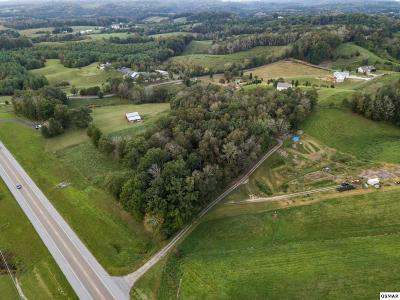 Sevierville Residential Lots & Land For Sale: Lot 3 Newport