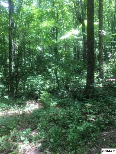 Sevierville Residential Lots & Land For Sale: Clabo Rd