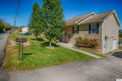 Sevierville Single Family Home For Sale: 306 Red Bud Lane