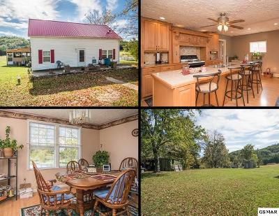 Sevierville Single Family Home For Sale: 1113 Holbert Cemetery Road