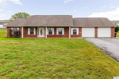 Sevierville Single Family Home For Sale: 1621 Turtle Dove Trail