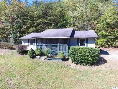 Pigeon Forge Single Family Home For Sale: 524 Pine Mountain Rd