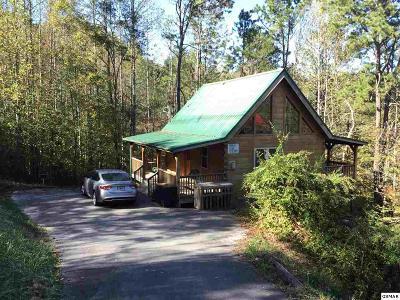 Gatlinburg Single Family Home For Sale: 428 Proffitt Rd.