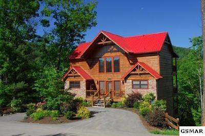 Pigeon Forge Single Family Home For Sale: 1350 Parkview Vista Way