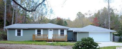 Gatlinburg Single Family Home For Sale: 1189 Cole Lane