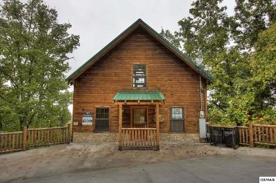 Sevierville Single Family Home For Sale: 1818 Silver Poplar