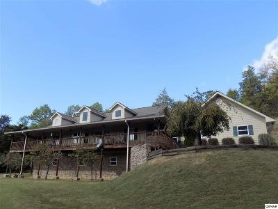 Sevier County Single Family Home For Sale: 1823 Alvins Ridge Dr