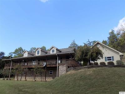 Sevierville Single Family Home For Sale: 1823 Alvins Ridge Dr
