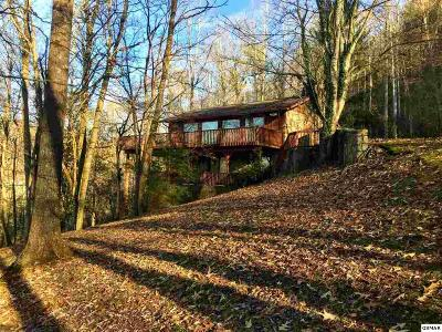 Gatlinburg Single Family Home For Sale: 341 Lewis Clabo Road