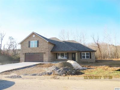 Maryville Single Family Home For Sale: 1005 Elsborne Ridge Way