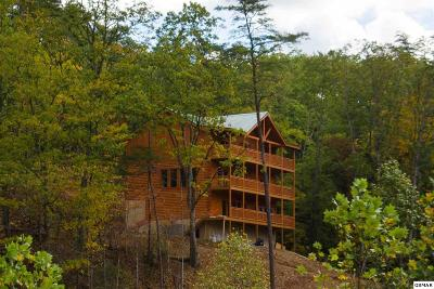 Sevierville Single Family Home For Sale: Lot 23 Barn Door Ln