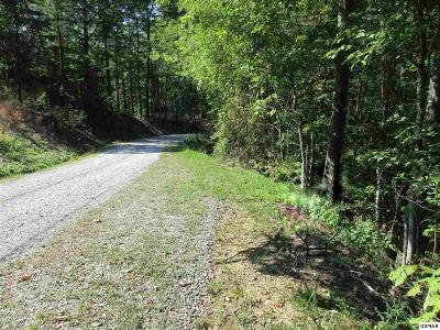 Sevierville TN Residential Lots & Land For Sale: $18,000