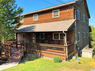 Sevierville Single Family Home For Sale: 229 Parrotts Landing Way