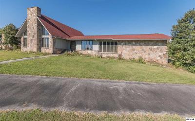 Dandridge Single Family Home For Sale: 972 Highway 139