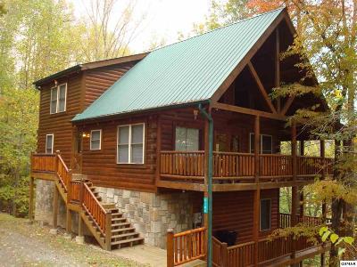 Sevierville Single Family Home For Sale: 4144 Burning Tree Lane
