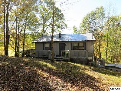 Sevierville TN Single Family Home For Sale: $219,000
