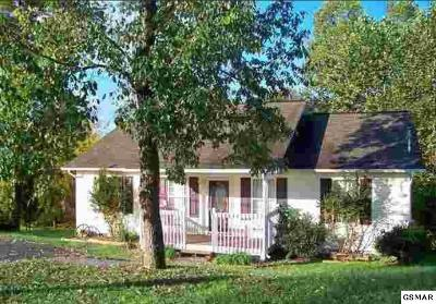 Sevierville Single Family Home For Sale: 139 Red Bud Ln.