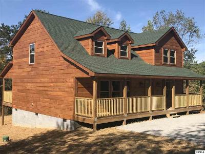 Sevierville Single Family Home For Sale: 2956 Covemont Rd