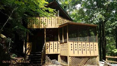 Gatlinburg Single Family Home For Sale: 947 Ski Mountain Rd