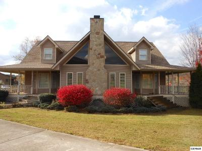 Sevierville Single Family Home For Sale: 3933 Durham