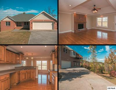 Kodak Single Family Home For Sale: 3244 Sandpiper Court