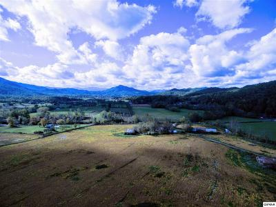 Sevierville Residential Lots & Land For Sale: 2570 Herb Ownby Way
