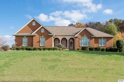 Sevierville Single Family Home For Sale: 1202 Saint Johns Ct