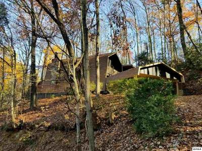 Gatlinburg Single Family Home For Sale: 1424 Zurich Rd