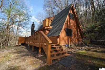 Gatlinburg Single Family Home For Sale: 1009 Ski Mtn Road