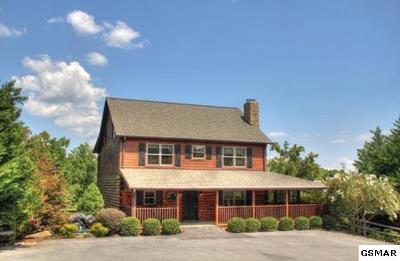 Sevierville Single Family Home For Sale: 317 Oak Haven Way