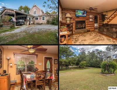 Sevierville Single Family Home For Sale: 194 Manning Ridge Drive