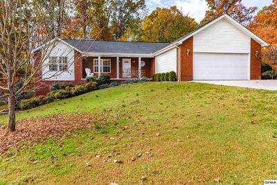 Seymour Single Family Home For Sale: 805 Reagan View Ln