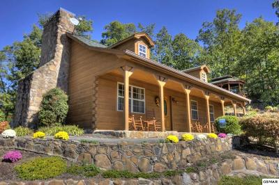 Sevierville Single Family Home For Sale: 1840 Sandstone Way