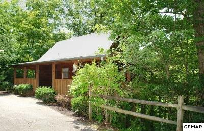 Sevierville Single Family Home For Sale: 242 Oak Haven Way