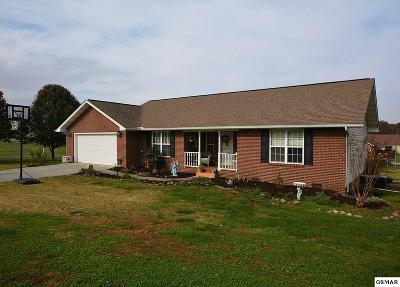 Sevierville Single Family Home For Sale: 2256 Karsons Ct