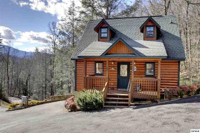 Gatlinburg Single Family Home For Sale: 330 Cottage Pinnacle Way