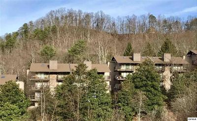 Sevierville Condo/Townhouse For Sale: 1081 Cove Rd.