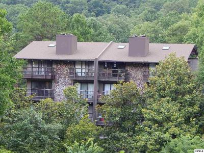 Sevierville Condo/Townhouse For Sale: 1081 Cove Rd U732