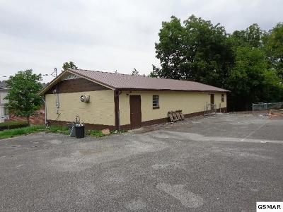 Cocke County Commercial For Sale: 114 Mulberry