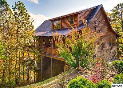 Sevierville Single Family Home For Sale: 2540 Raccoon Hollow Way