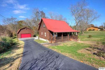 Sevierville Single Family Home For Sale: 509 Mount Dr
