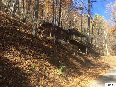 Sevierville Single Family Home For Sale: 1347 Ski View Ln