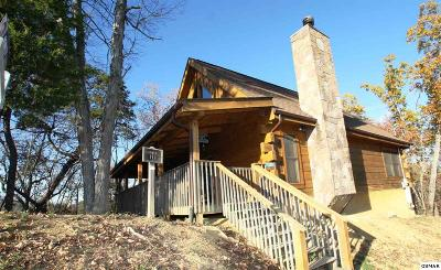 Sevierville Single Family Home For Sale: 1008 Rick Way