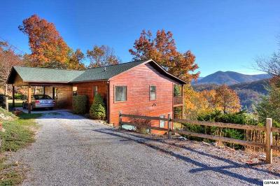 Sevierville Single Family Home For Sale: 2725 Heather Ln Way